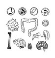 immune system icon set vector image vector image