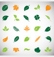 leafs color icon set on white background for vector image