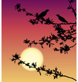 Nightingale meeting at sunset vector image