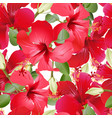 seamless hibiscus pattern vector image vector image