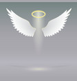 Angel wings on heavenly vector image