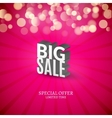 Big Sale 3d letters poster Promotional marketing vector image vector image