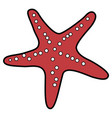 isolated seastar icon vector image vector image