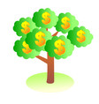 money tree isolated on white background vector image vector image