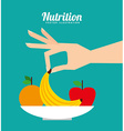 nutrition and health design vector image vector image