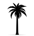 palm tree silhouette 02 vector image vector image