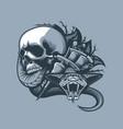 scene from skull comes a dangerous viper vector image