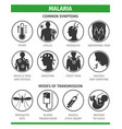 symptoms and methods malaria infection vector image vector image