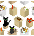 cat in box pattern pet in cardboard box vector image vector image