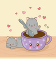 cute little cats with coffee cup kawaii characters vector image