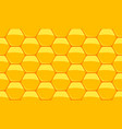 honey and wax vector image