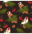 Seamless birds and spruce branches vector image