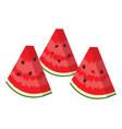 watermelon slices vector image vector image