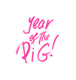 year of the pig xmas brush lettering vector image
