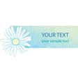 beautiful camomile floral banner vector image vector image