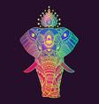 boho elephant floral design vector image vector image