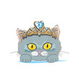 cat with a gold tiara vector image