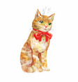 cute ginger cat with red bow isolated on white vector image vector image