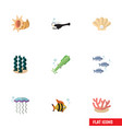flat icon nature set of algae seafood conch and vector image vector image