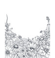 floral backgrounds with hand drawn wildflowers vector image