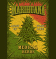 rastafarian flag grunge background vector image vector image