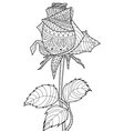 Rose coloring for adults