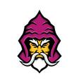 wizard head front mascot vector image vector image