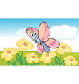 Cartoon butterfly vector image