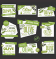 collection of olive oil labels and badges vector image vector image