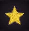 golden glitter star vector image vector image