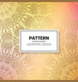 indian floral luxury ornament pattern vector image vector image