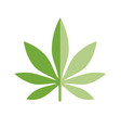 marijuana or cannabis leaf icon logo template vector image vector image