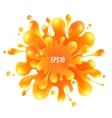 Orange paint splash isolated on white background vector image vector image