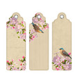 set of bookmarks with flowers vector image