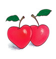 two red apple in shape heart vector image