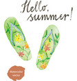 watercolor flip flops vector image