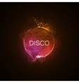 Disco neon sign vector image