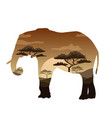double exposure bear elephant camel and vector image vector image