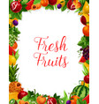 exotic fresh natural fruits frame poster vector image