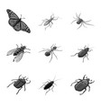 isolated object small and animal icon set of vector image vector image