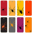 spiders price tags vector image