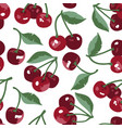 summer pattern with sweet cherries flowers and vector image vector image