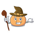 witch mochi mascot cartoon style vector image vector image