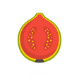 guava icon flat style vector image