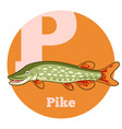abc cartoon pike vector image vector image