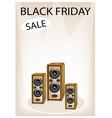 Audio Speaker Shouting Word Black Friday Sale vector image vector image