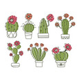 cactuses hand drawn outline cactus with flowers vector image vector image