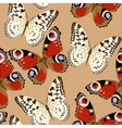 Colorful butterflies seamless vector image vector image