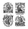 horse riding club equestrian sport t-shirt prints vector image vector image