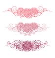 set floral elements for design vector image